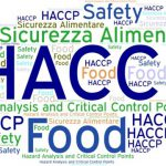 haccp-hazard-analysis-and-critical-control-points-vector-27207728