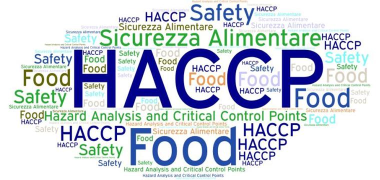 haccp-hazard-analysis-and-critical-control-points-vector-27207728